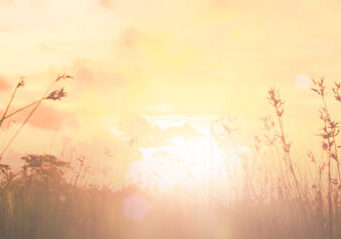Happy thanksgiving day concept: Beautiful meadow and sky autumn sunrise background